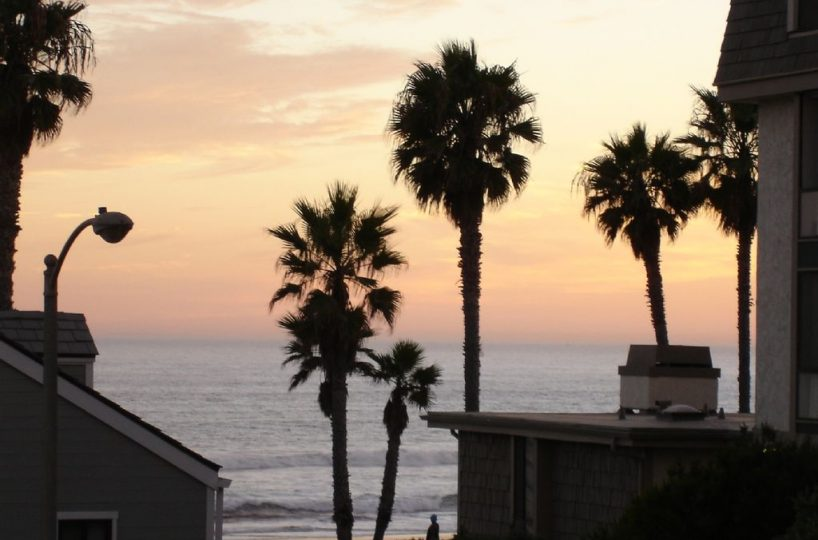 a-101 palm trees pacific ocean and a sunset